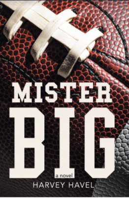 Mister Big cover