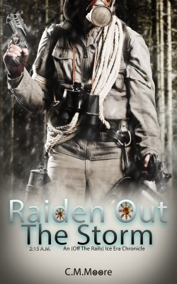 Raiden out the Storm cover