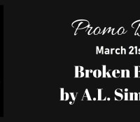 Promo Day: Broken Bitch by A.L. Simpson