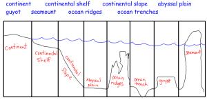 Ocean Floor Diagram  Earth Science