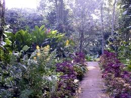 flora agricola y de jardin