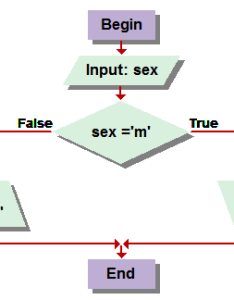 Visual logic flowchart also chanyoot meepoh rh sites google