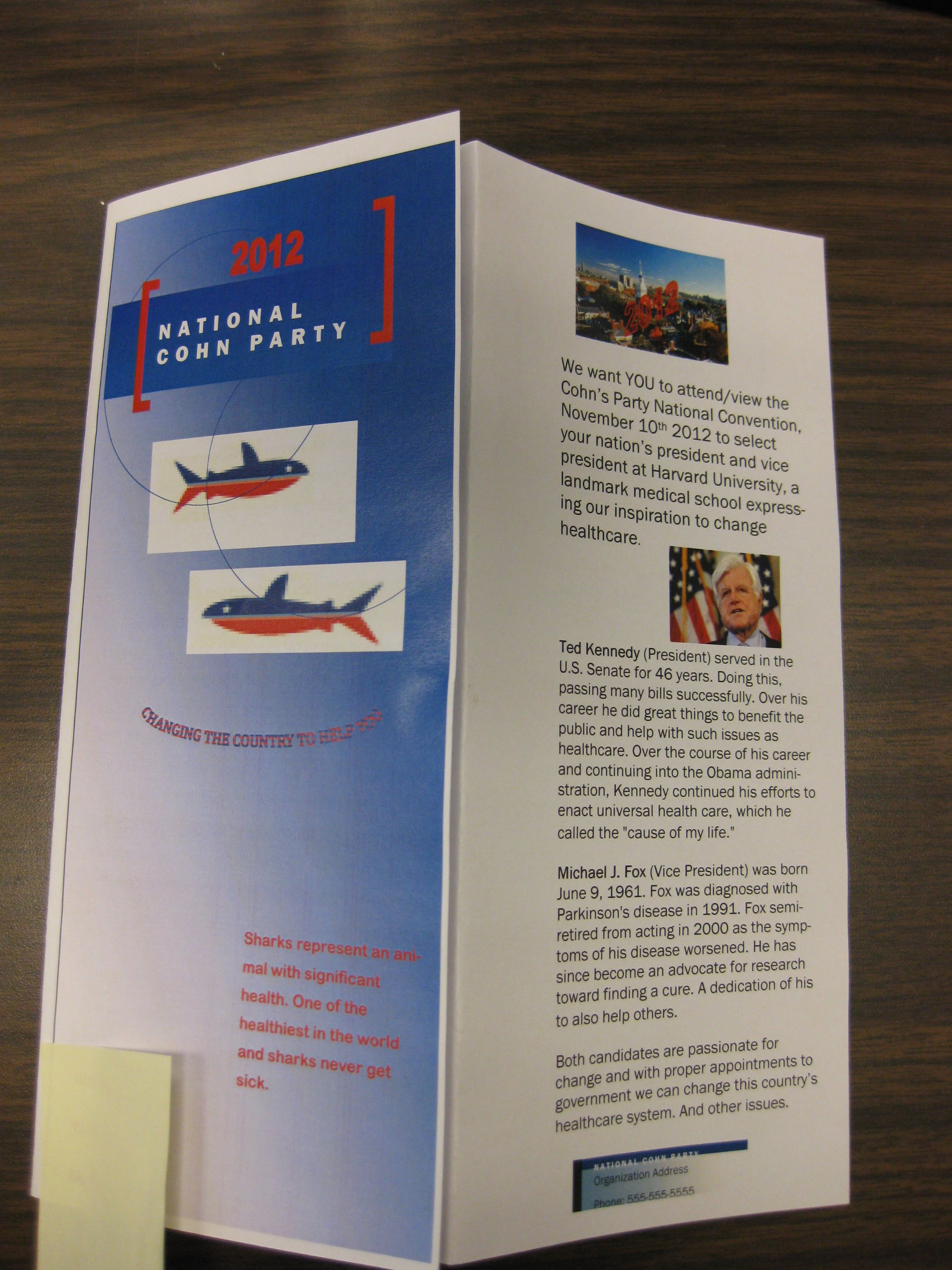 Political Party Brochures Ms Ehrlich's Class