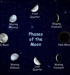 Activity 5: 2nd grade Science: Understanding the Phases of the Moon -  MCobyRoot3140 [ 879 x 970 Pixel ]