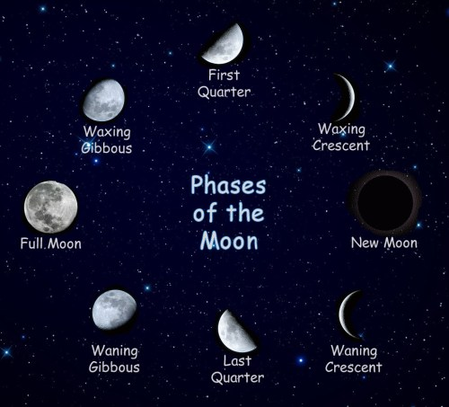 small resolution of Activity 5: 2nd grade Science: Understanding the Phases of the Moon -  MCobyRoot3140