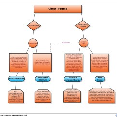 Nursing Workflow Diagram Examples Black White And Animal Cell No Labels Chest Trauma Flow Chart Medical Surgical