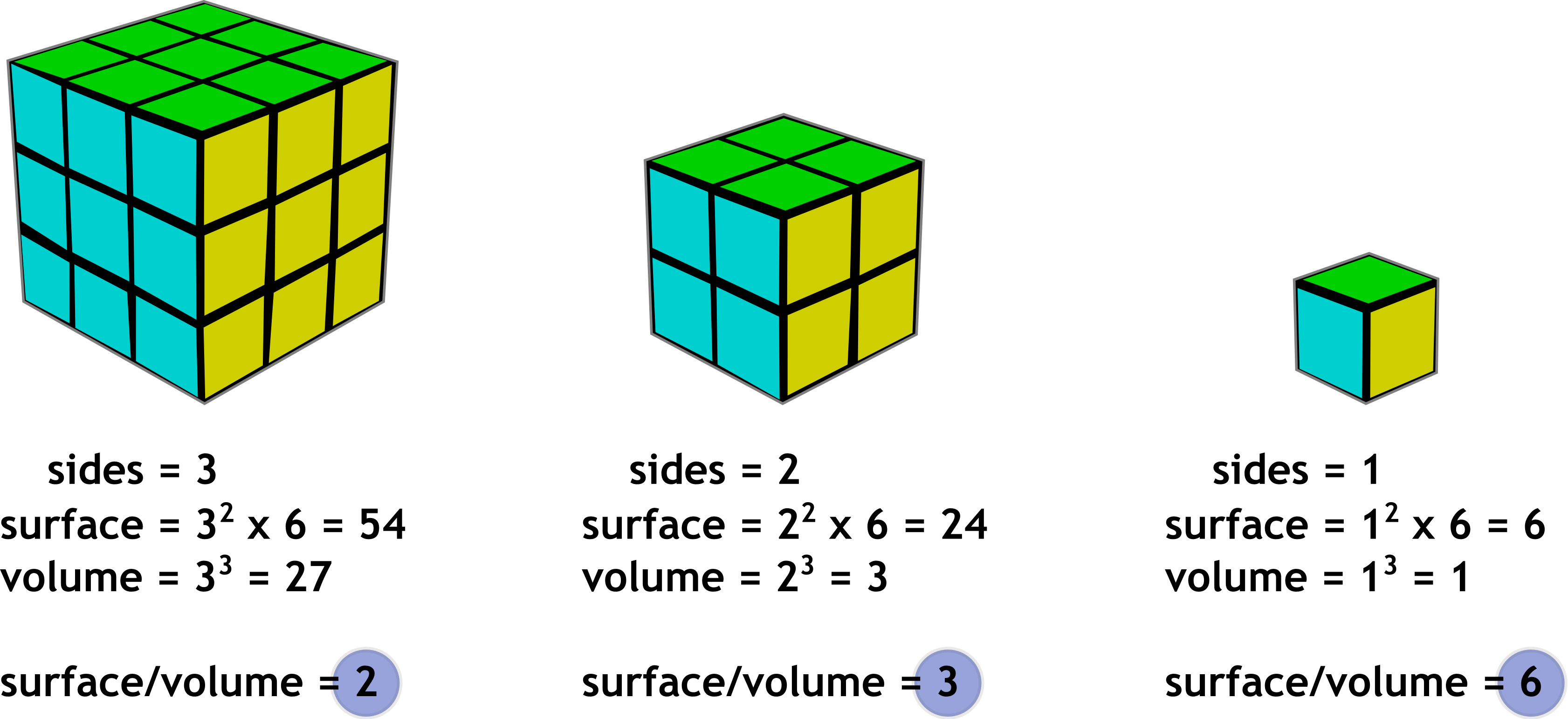Worksheet Triangular Prisms Surface Area Prisms And Cubes