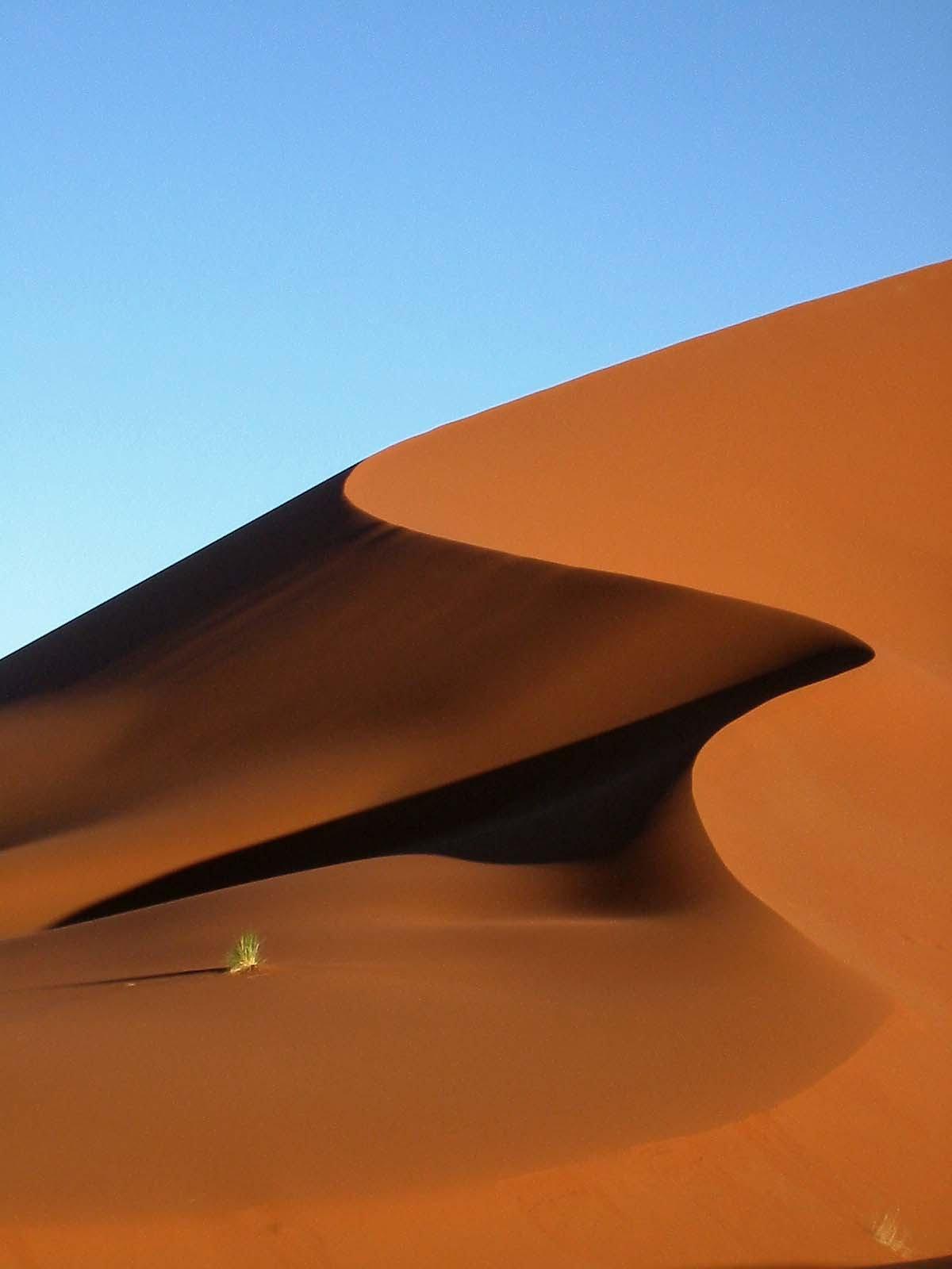 Rain Fall Hd Wallpapers Landscape Of The Desert Thewonderful99