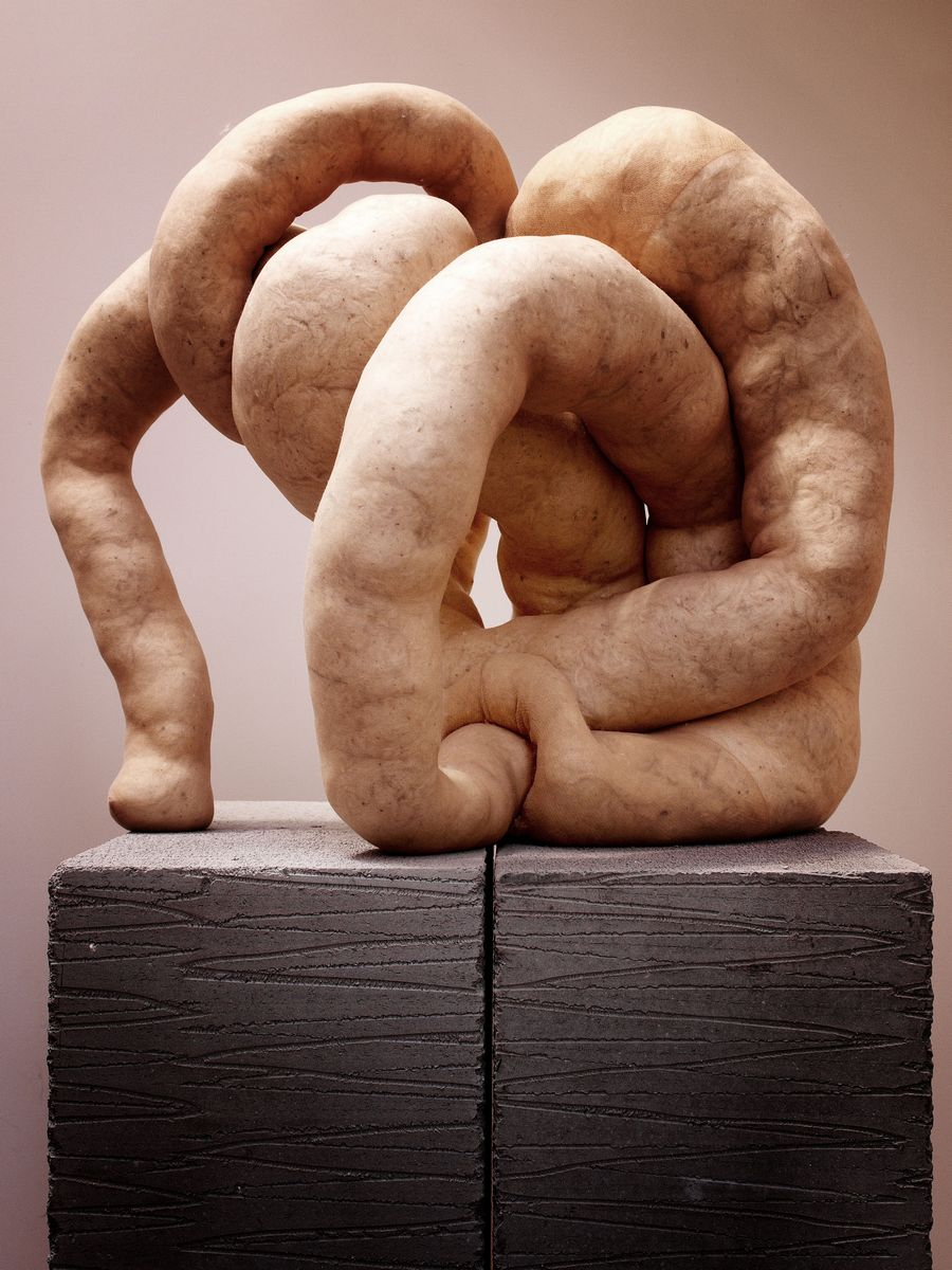 Sarah Lucas  ART 206 Peoples UFA