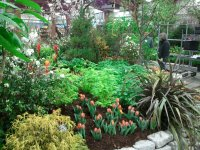 The Middlebury Landscape - Flower Show-Sneak Preview
