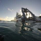Bermuda - swim prior to departure