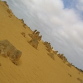 The Pinnacles of Nambung National park