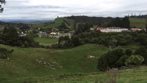 Town of Waitomo