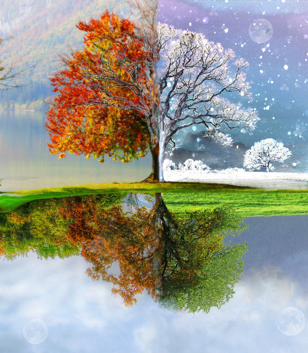 Fall Leaves Watercolor Wallpaper Prepping Your Home For The Changing Seasons Part 1 Of 4