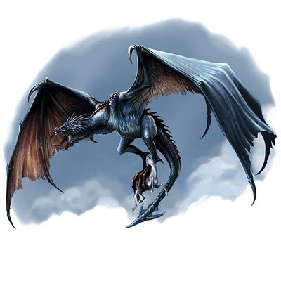 wyverns vs dragons