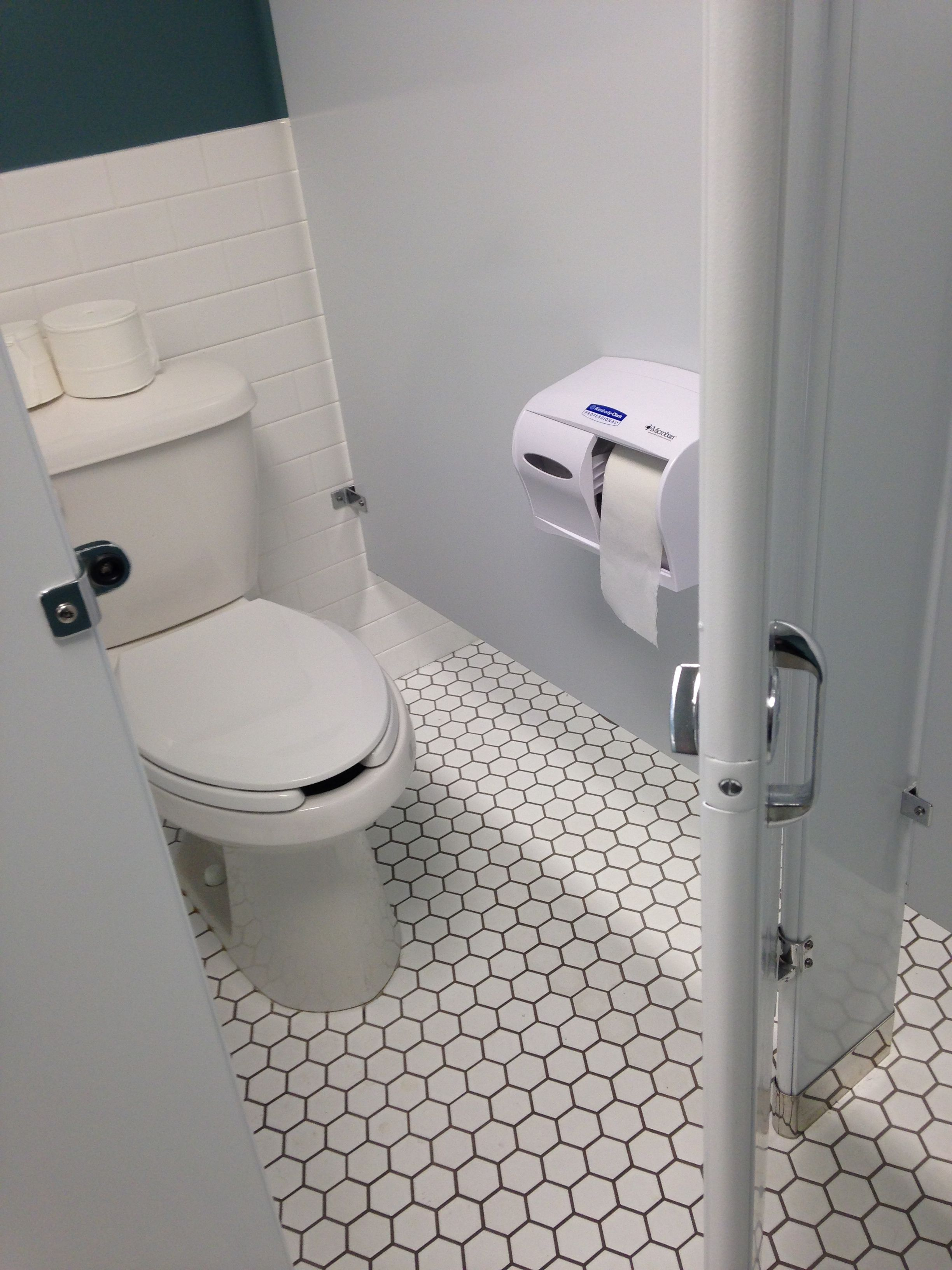Should you stop using public toilets  SiOWfa16 Science