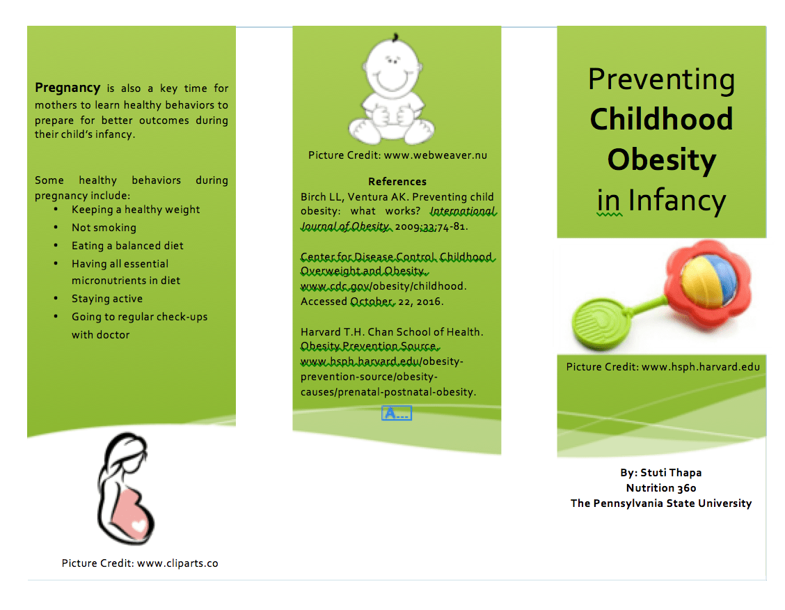Brochure Preventing Childhood Obesity In Infancy