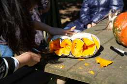 An ELI student carves a flat white gourd, revealing the bright orange insides.