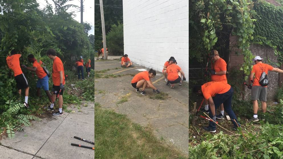 NJSLC 2019 participants cut down overgrowth and trees in a nearby alley by McNichols Campus.