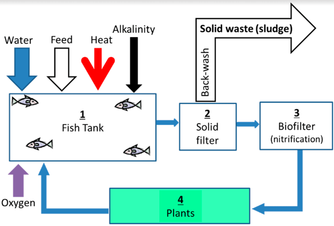 hight resolution of aquaponics water cycle maintenance