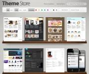 themestore-shopify