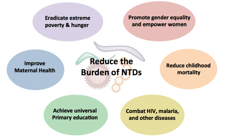 Neglected Tropical Diseases: Progress and Challenges for the