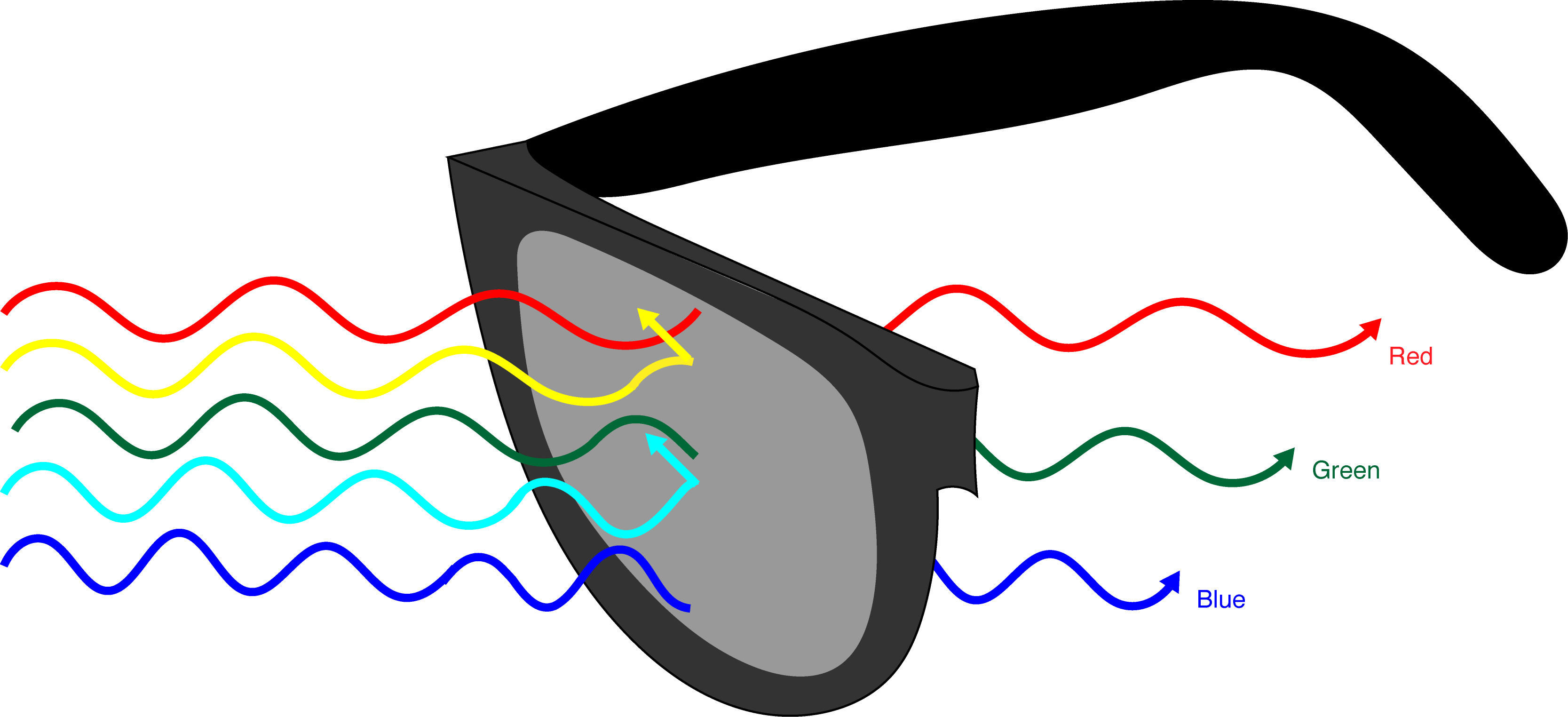 Kansas To New OzHow Way Could The Change Glasses From ZlPkXwTOiu