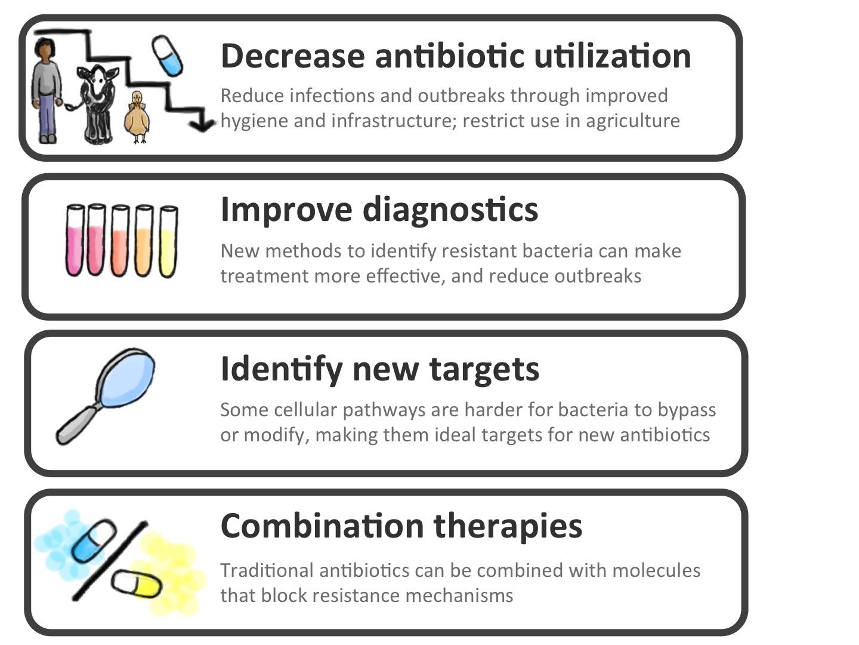 Image Result For Can Antibiotics Change