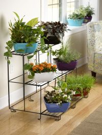 Dish Garden: Viva Self-Watering Dish Planter, Square ...