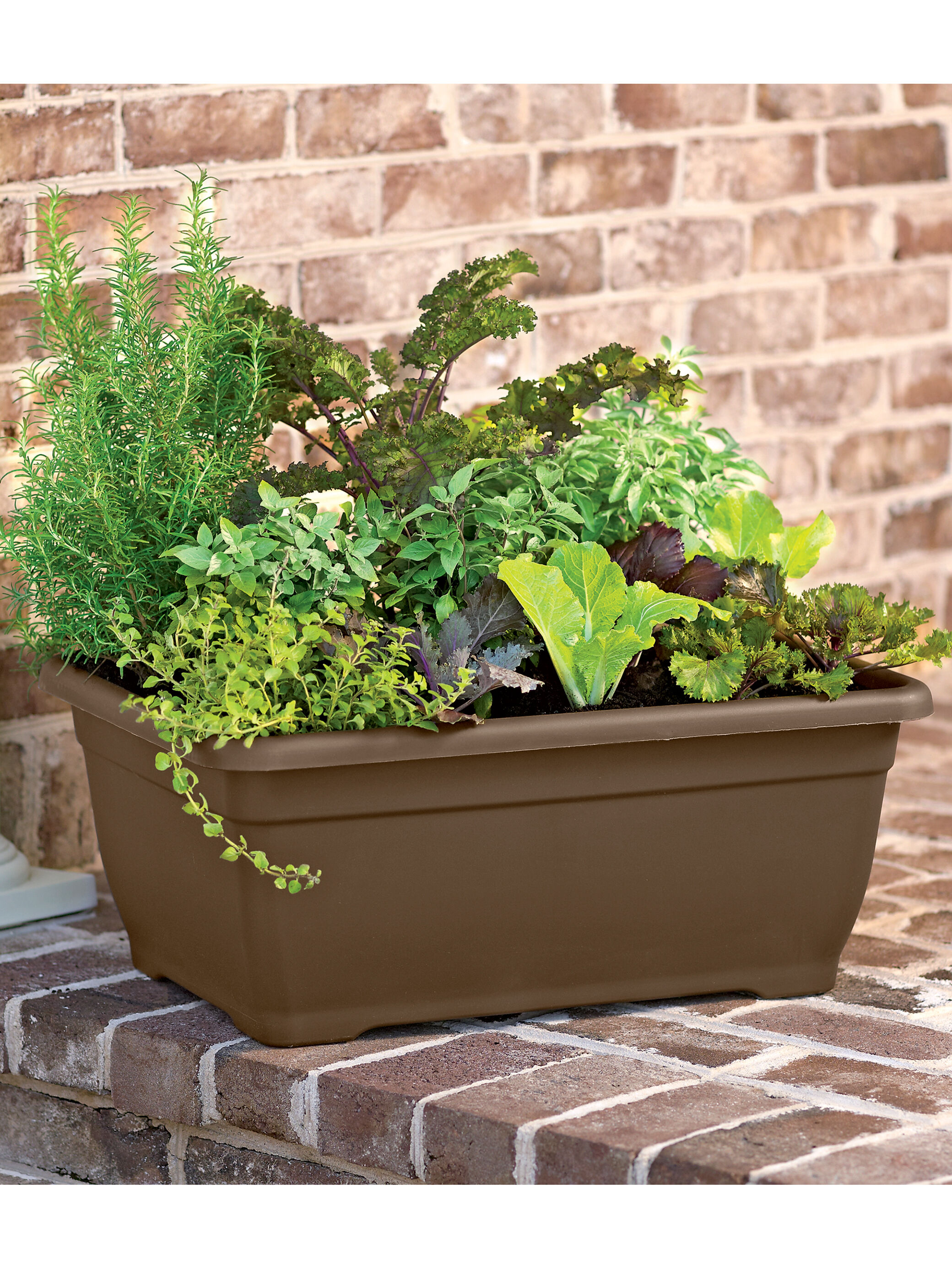 herb planter - -watering patio