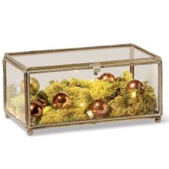 Small Side Table For Living Room Images Contemporary Rooms Glass Display Box - Treasure Brass And ...