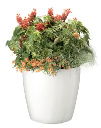 Large Flower Pots - Plastic Rolling Viva Self-Watering ...