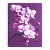 Purple Orchid Printed Canvas - GrahamBrownUS