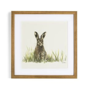 Countryside Hare Framed Print