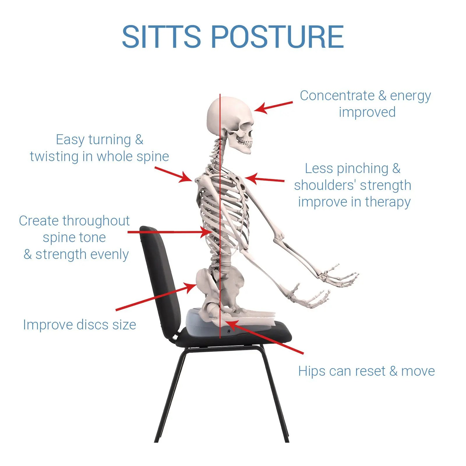 chair posture back pain palecek dining chairs sitts cushion relief by improving