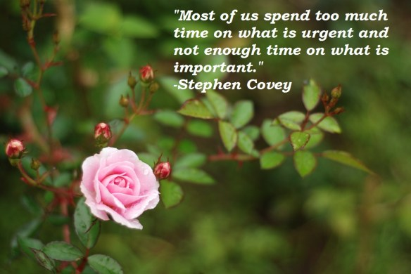 Stephen Covey Quote Too Much Time Urgent Important