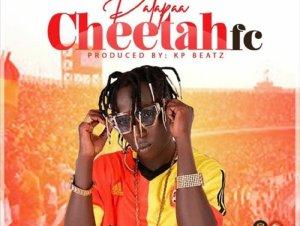 patapaa cheetahfc