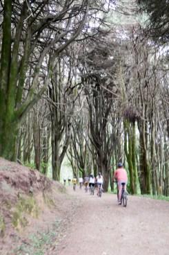 bike ride-27