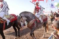 horse festival-6