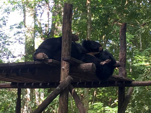iPhone 2 oct-34