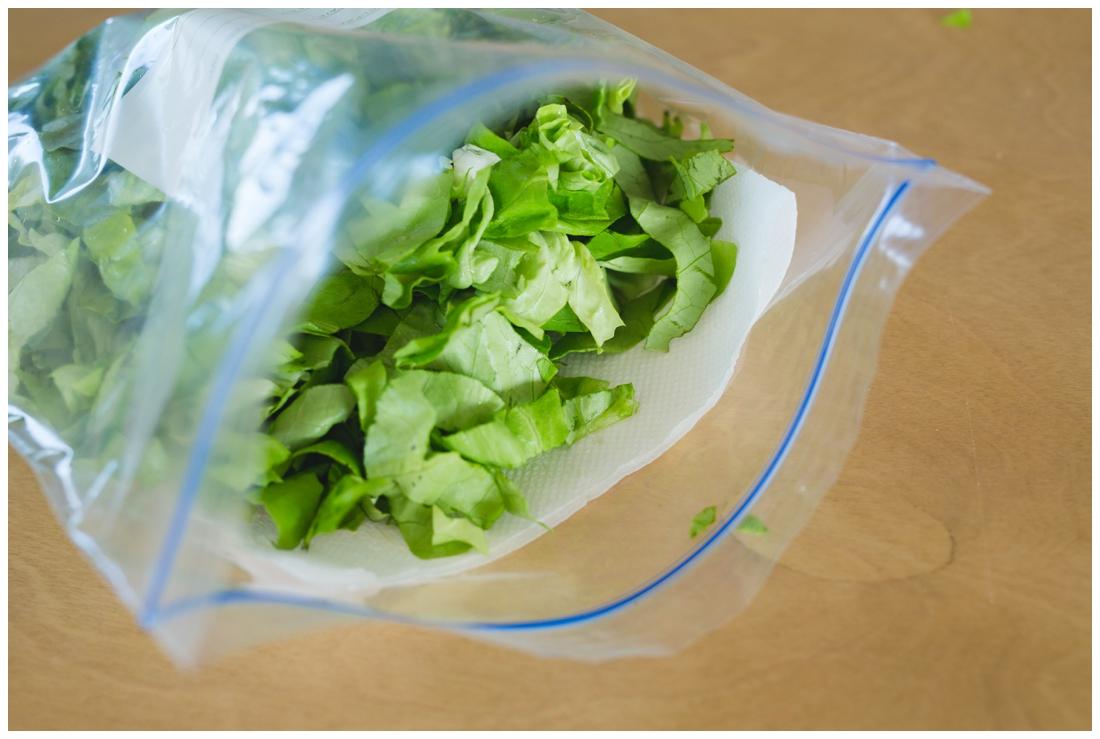 How do I Store leftover Shredded Lettuce