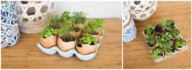 Egg Holder Decoration | Egg Holder | Egg Carton | Farmhouse Decor | Farmhouse Style | Farmhouse Kitchen | Farmhouse Decor | Farmhouse Decor DIY | Inspiration for this cute Egg Holder Decoration on the Six Clever Sisters blog! {Plus a list of stores & prices for ceramic egg holders!}