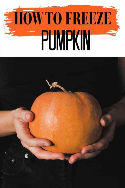 Fall means pumpkin recipes, but fresh pumpkin spoils so quickly! Learning how to freeze pumpkin so it stays fresh long past pumpkin season!