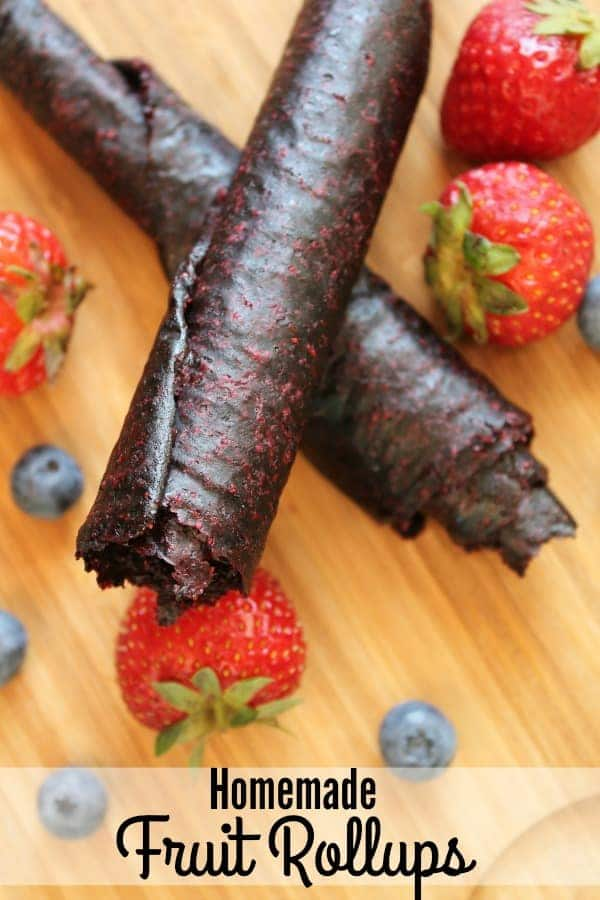 Do you need a few new easy snack recipes? These homemade fruit rollups are perfect! Add them to your favorite dehydrator recipes! Tried and true, these are sure to become a family favorite!