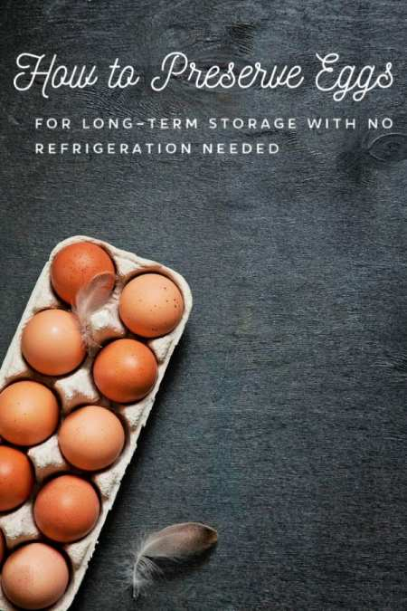 Stocked up on eggs? Worried they'll spoil before you can use them? Let me show you how to preserve eggs for long-term storage with NO refrigeration needed! It's super simple and you'll be amazed at how well it works!
