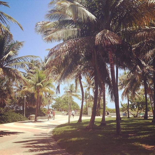 Ocean drive park