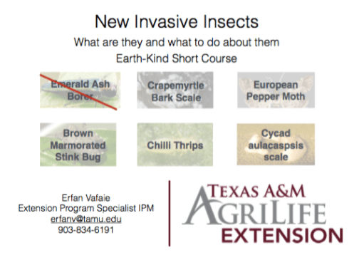 Earth-Kind New Invasives