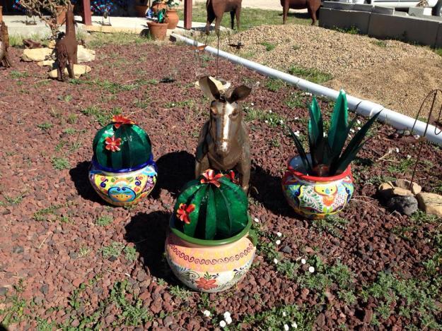 Cactus Mule