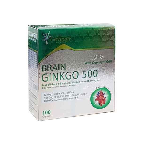 Brain Ginkgo 500