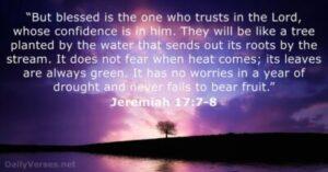 Jeremiah 17v7-8